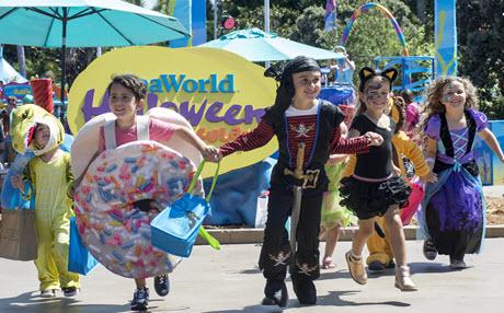 Halloween Spooktacular Seaworld.Funex Com Seaworld San Diego
